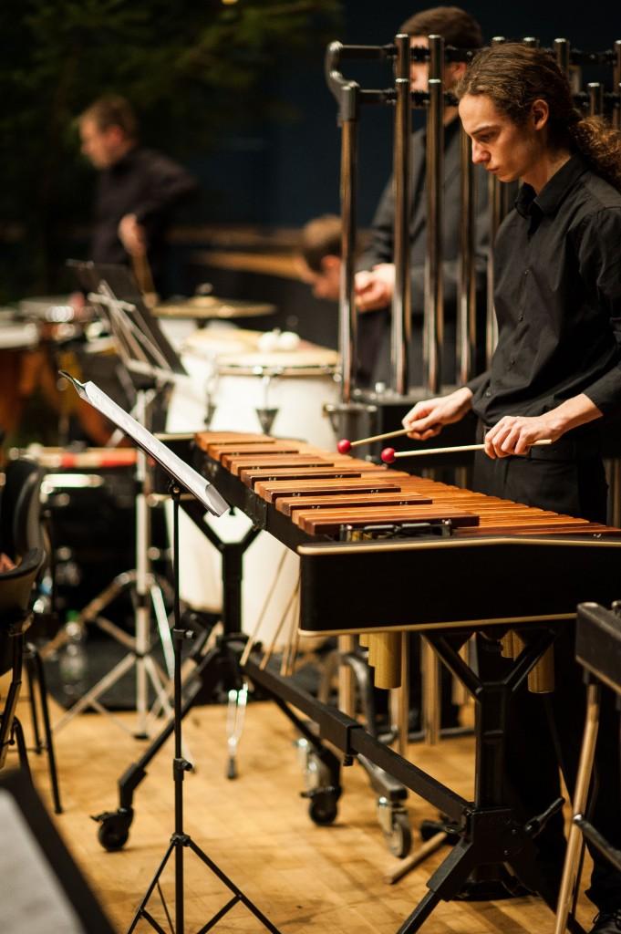 Musikverein Schefflenz-115