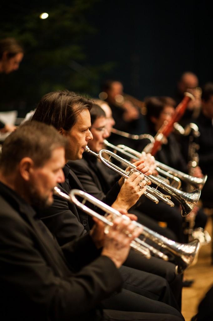 Musikverein Schefflenz-69